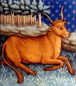 zodiac-horoscope-taurus-15thcentury