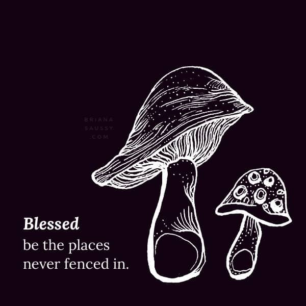 Blessed be the places never fenced in.