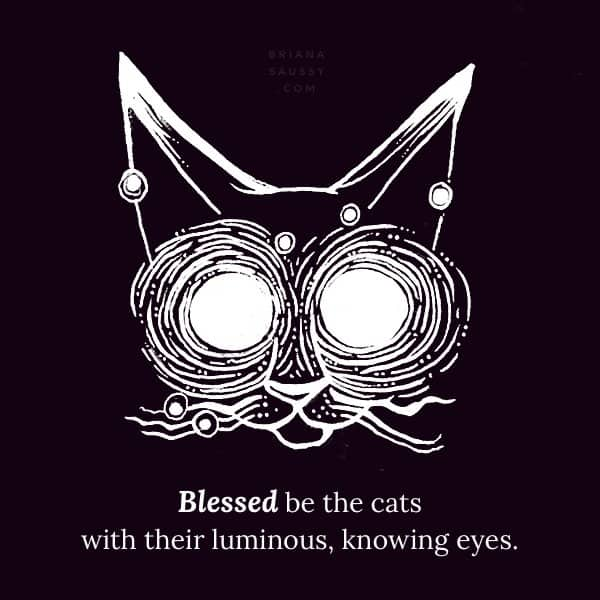 Blessed be the cats with their luminous, knowing eyes.