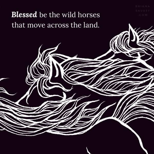 Blessed be the wild horses that move across the land.