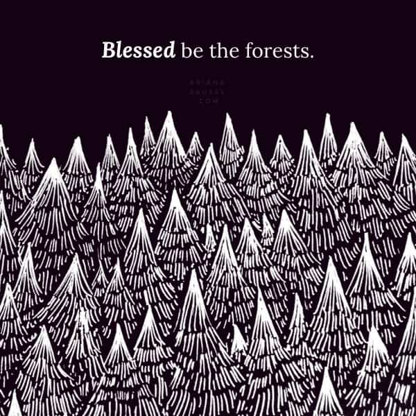 Blessed be the forests.